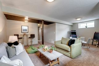 Photo 30: 92 COPPERPOND Mews SE in Calgary: Copperfield Detached for sale : MLS®# A1084015