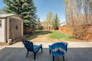Photo 28: 80 Mt Apex Crescent SE in Calgary: McKenzie Lake Detached for sale : MLS®# A1104238