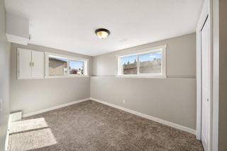 Photo 28: 28 Falton Mews NE in Calgary: Falconridge Detached for sale : MLS®# A1144383