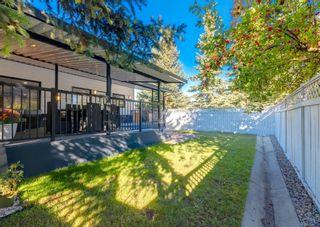 Photo 22: 156 Douglas Woods Terrace SE in Calgary: Douglasdale/Glen Detached for sale : MLS®# A1145281