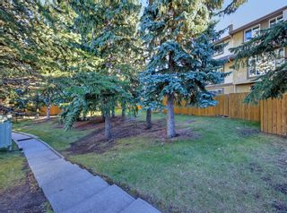 Photo 29: 14 310 BROOKMERE Road SW in Calgary: Braeside Row/Townhouse for sale : MLS®# A1031806