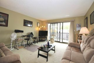 """Photo 5: 325 12170 222 Street in Maple Ridge: West Central Condo for sale in """"WILDWOOD TERRACE"""" : MLS®# R2353429"""