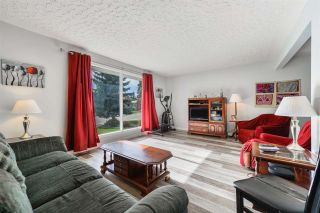 Photo 3:  in Edmonton: Zone 22 House for sale : MLS®# E4215984