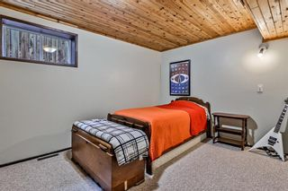 Photo 44: 1217 16TH Street: Canmore Detached for sale : MLS®# A1106588