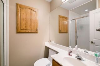 Photo 25: 164 Maple Court Crescent SE in Calgary: Maple Ridge Detached for sale : MLS®# A1144752