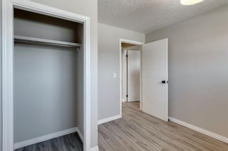 Photo 18: 3812 49 Street NE in Calgary: Whitehorn Detached for sale : MLS®# A1054455