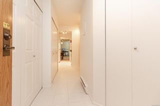 Photo 3: 104 1241 Fairfield Rd in : Vi Fairfield West Condo for sale (Victoria)  : MLS®# 862113