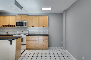 Photo 25: 307 903 19 Avenue SW in Calgary: Lower Mount Royal Apartment for sale : MLS®# A1152500