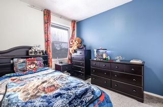 Photo 16: 6662 Temple Drive NE in Calgary: Temple Row/Townhouse for sale : MLS®# A1063811