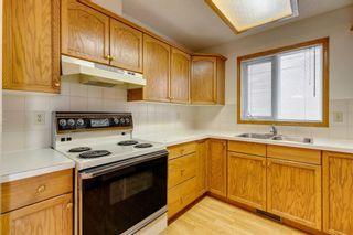 Photo 16: 924 Mckinnon Drive NE in Calgary: Mayland Heights Semi Detached for sale : MLS®# A1122625