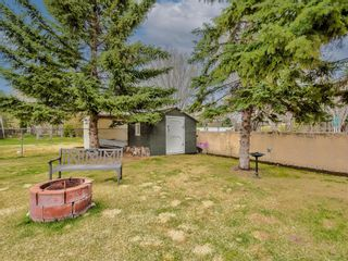 Photo 48: 54 Mount Robson Close SE in Calgary: McKenzie Lake Detached for sale : MLS®# A1096775