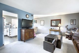 Photo 15: 1711 65 Street NE in Calgary: Pineridge Detached for sale : MLS®# A1038776