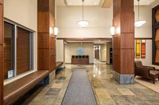 Photo 23: 1510 751 Fairfield Rd in : Vi Downtown Condo for sale (Victoria)  : MLS®# 881728