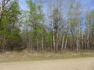 Photo 2: 50 Ave RR 281: Rural Wetaskiwin County Rural Land/Vacant Lot for sale : MLS®# E4191207