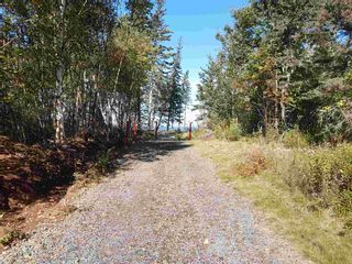 Photo 17: LOTS Sand Bank Road in Victoria Vale: 400-Annapolis County Vacant Land for sale (Annapolis Valley)  : MLS®# 202103631