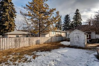 Photo 9: 1527 42 Street SE in Calgary: Forest Lawn Detached for sale : MLS®# A1079125