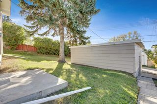 Photo 19: 2815 11 Avenue SE in Calgary: Albert Park/Radisson Heights Detached for sale : MLS®# A1149863