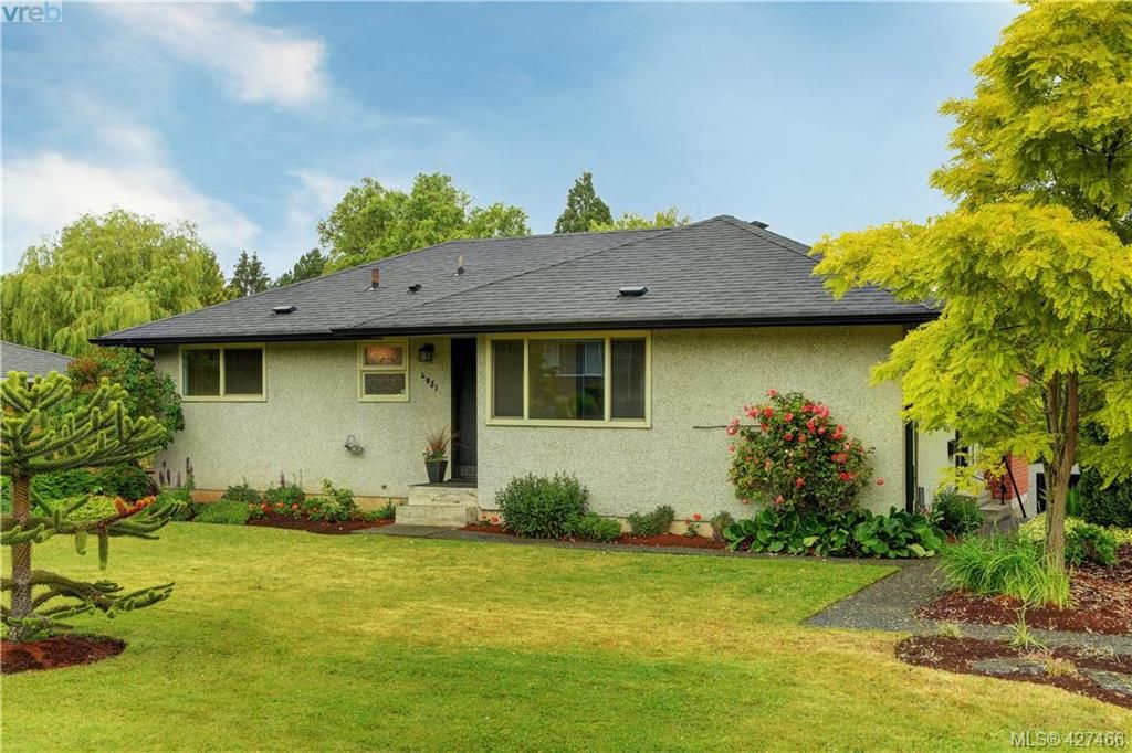Main Photo: 4051 Hodgson Pl in VICTORIA: SE Lake Hill House for sale (Saanich East)  : MLS®# 842061