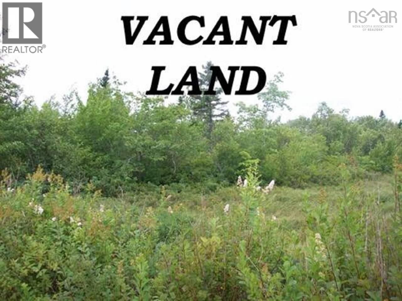 Main Photo: Lot Telfer Road in Caledonia: Vacant Land for sale : MLS®# 202125824