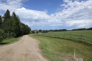 Photo 9: 461015 RR 75: Rural Wetaskiwin County House for sale : MLS®# E4249719