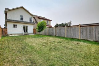 Photo 44: 159 Copperstone Grove SE in Calgary: Copperfield Detached for sale : MLS®# A1138819