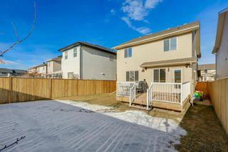 Photo 45: 69 SILVERADO Boulevard SW in Calgary: Silverado Detached for sale : MLS®# A1072031