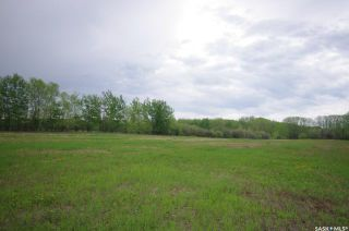 Photo 16: Weiss Lakefront Acreage in Big River: Lot/Land for sale : MLS®# SK834150