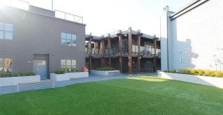 Photo 37: 214 12088 3RD AVENUE in Richmond: Steveston Village Condo for sale : MLS®# R2453224