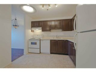 """Photo 3: 609 1310 CARIBOO Street in New Westminster: Uptown NW Condo for sale in """"River Valley"""" : MLS®# V1045912"""