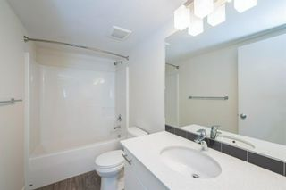 Photo 23: 3410 181 Skyview Ranch Manor NE in Calgary: Skyview Ranch Apartment for sale : MLS®# A1073053