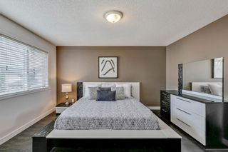Photo 28: 18 Copperfield Crescent SE in Calgary: Copperfield Detached for sale : MLS®# A1141643