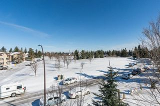 Photo 8: 311 2 HEMLOCK Crescent SW in Calgary: Spruce Cliff Apartment for sale : MLS®# A1086959