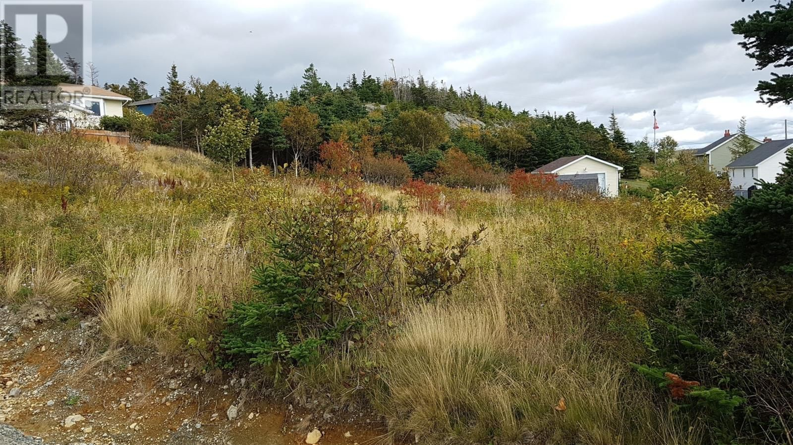 Main Photo: 8 & 10 Robs Road in Paradise: Vacant Land for sale : MLS®# 1229482