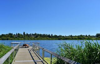 Photo 40: 914 DUNN Ave in : SE Swan Lake House for sale (Saanich East)  : MLS®# 876045