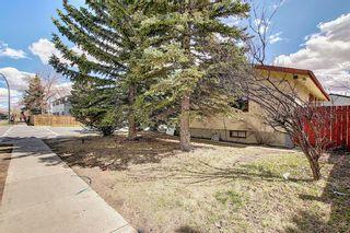 Photo 41: 455 Falconridge Crescent NE in Calgary: Falconridge Detached for sale : MLS®# A1103477