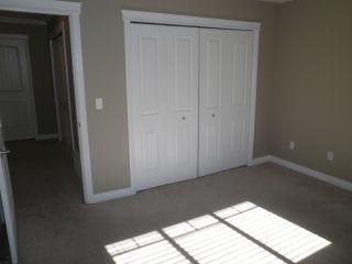 Photo 12: 23709 110B Avenue in Maple Ridge: Cottonwood MR House for sale : MLS®# R2114706