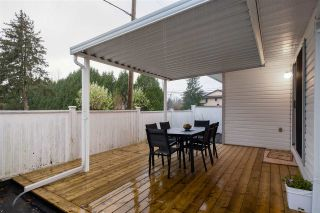 Photo 19: 22262 124 Avenue in Maple Ridge: West Central House for sale : MLS®# R2536897