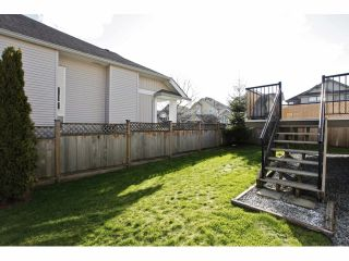 Photo 19: 19642 68A Avenue in Langley: Willoughby Heights House for sale : MLS®# F1406787