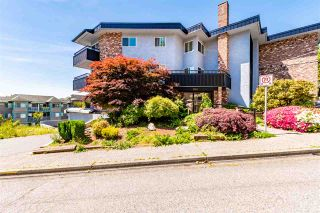 """Photo 34: 313 2551 WILLOW Lane in Abbotsford: Abbotsford East Condo for sale in """"Valley View Manor"""" : MLS®# R2459812"""