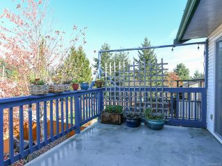 Photo 46: 2800 Windermere Ave in CUMBERLAND: CV Cumberland House for sale (Comox Valley)  : MLS®# 829726