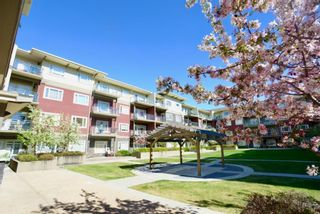 Photo 6: 334 11 MILLRISE Drive SW in Calgary: Millrise Apartment for sale : MLS®# A1109954