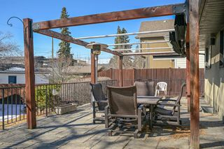 Photo 29: 2119 31 Avenue SW in Calgary: Richmond Detached for sale : MLS®# A1087090