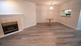 """Photo 4: 235 7439 MOFFATT Road in Richmond: Brighouse South Condo for sale in """"COLONY BAY"""" : MLS®# R2625963"""