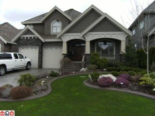 """Photo 1: 3118 162ND ST in Surrey: Grandview Surrey House for sale in """"MORGAN ACRES"""" (South Surrey White Rock)  : MLS®# F1108748"""
