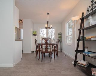 Photo 9: 1623 Chancellor Drive in Winnipeg: Waverley Heights Residential for sale (1L)  : MLS®# 202028474