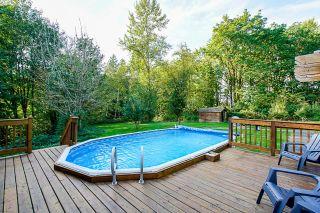 Photo 35: 24445 104 Avenue in Maple Ridge: Albion House for sale : MLS®# R2621324