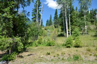 Photo 30: 455 Albers Road, in Lumby: House for sale : MLS®# 10235226