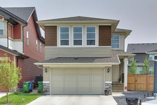 Main Photo: 75 Howse Road NE in Calgary: Livingston Detached for sale : MLS®# A1133745