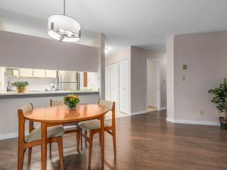 """Photo 7: 203 3191 MOUNTAIN Highway in North Vancouver: Lynn Valley Condo for sale in """"Lynn Terrace II"""" : MLS®# R2133788"""