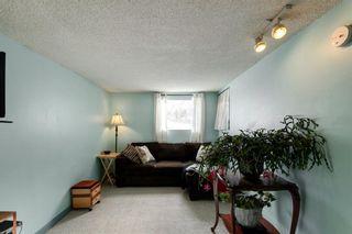 Photo 26: 855 13 Avenue NE in Calgary: Renfrew Detached for sale : MLS®# A1064139
